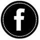 icon fb