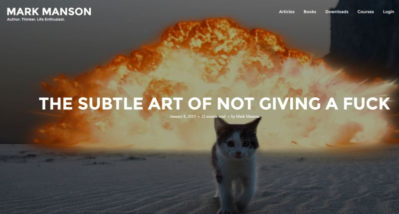 Loved the Pic on This!  A Soft Innocent Kitten Walking Away  from an Explosion with Indifference. It's Not Powerful- it's PAW-ER-FUL! Couldn't help myself...