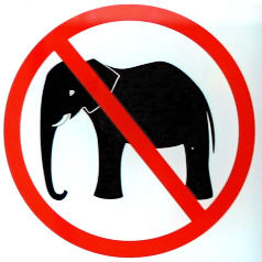 No_Elephants